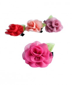 korean-chiffon-clips-8